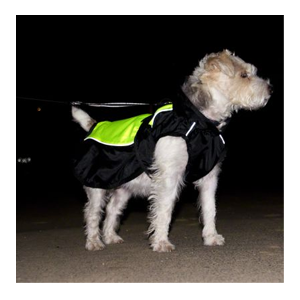 Hundtäcke Illume Nite Neon