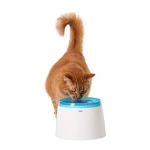 Cat It vattenfontän